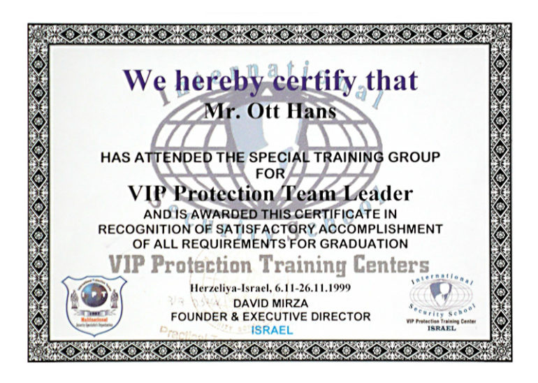 VIP Protect Team-Leader
